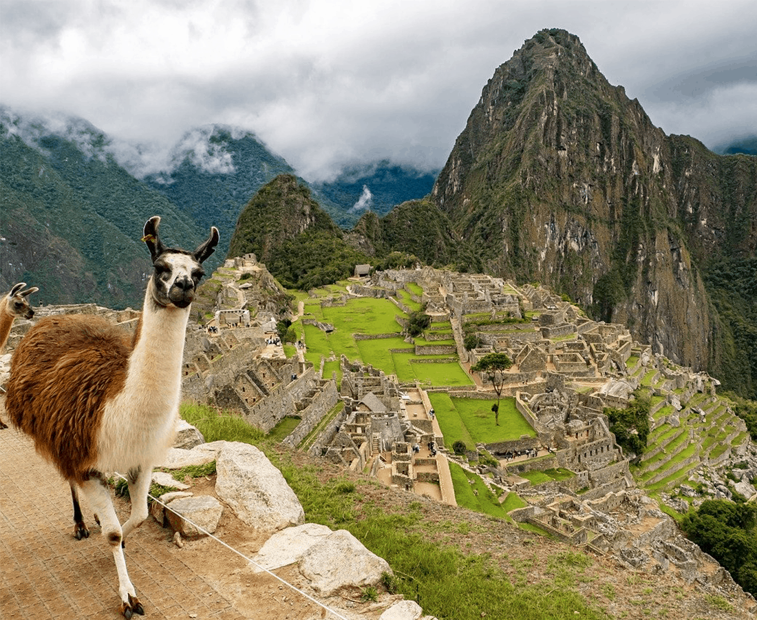 Wander from Home: Explore Ever-changing Landscapes of Greenery, Deserts and Ruins in Peru